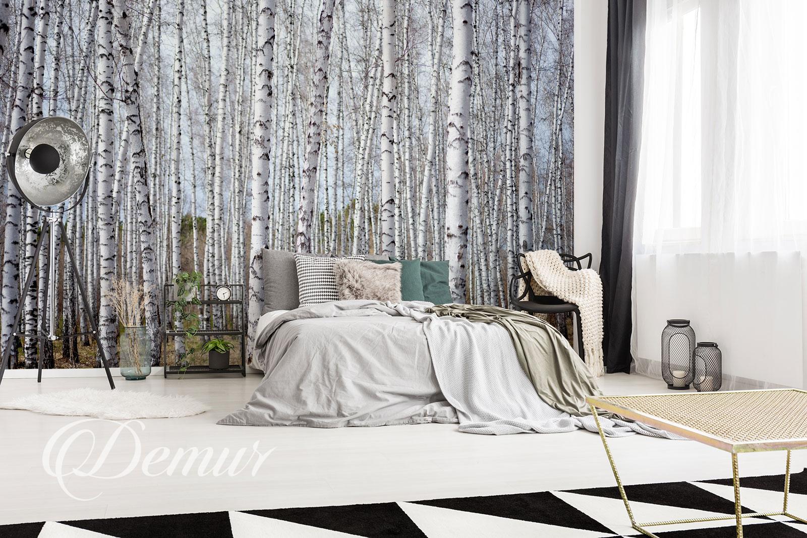 Fototapeta las brzozowy - Pomysł na ścianę w sypialni - Demur