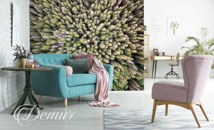 Fototapeta las z lotu ptaka - Pomysł na ścianę w salonie - Demur