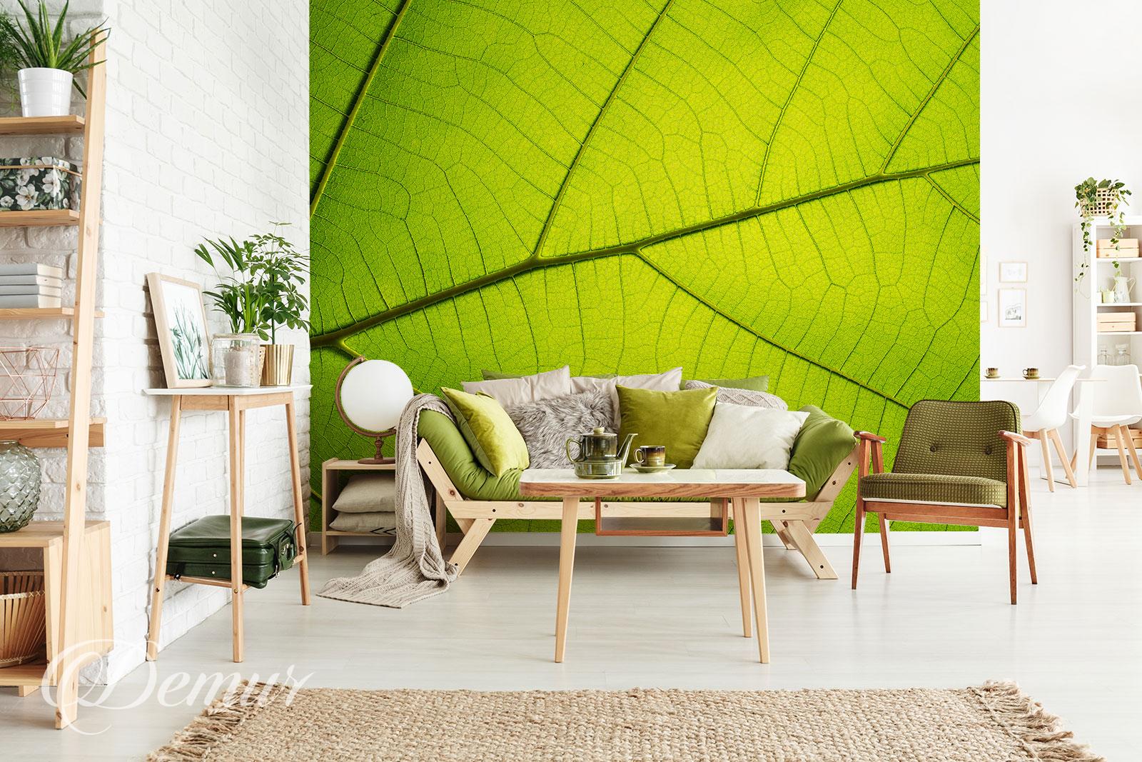 Fototapeta liść - Pomysł na ścianę - Demur