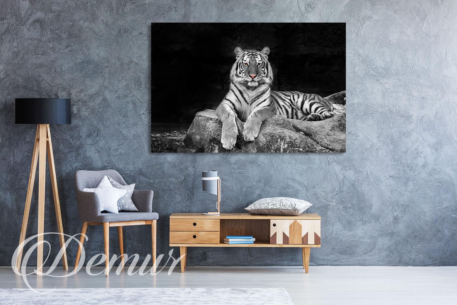 Obraz - Tygrys biało czarny - Jaki obraz do salonu - Demur