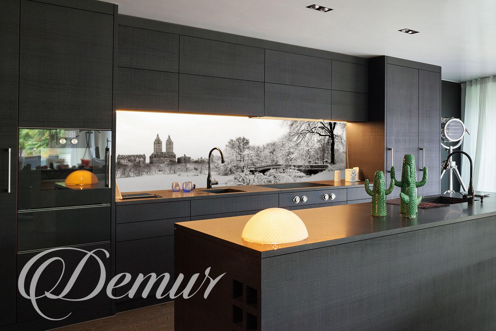 Fototapeta Central Park - Fototapety do kuchni pod szafki - Demur