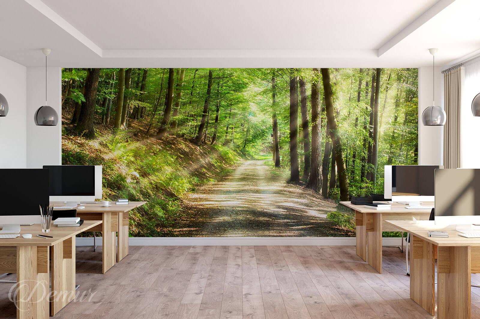 Fototapeta W leśnych ostępach - Fototapety z motywem drogi - Demur