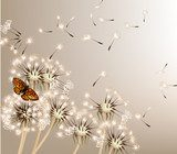 Abstract background with vector dandelions  Dmuchawce Fototapeta