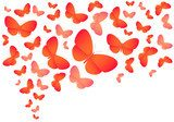 Colorful vector butterflies on white  Motyle Fototapeta