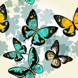 Beautiful seamless vector  pattern with butterflies  Motyle Fototapeta
