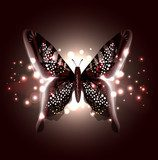 Beautiful Abstract Butterfly  Motyle Fototapeta