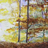 Autumn in the forest  Olejne Obraz