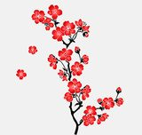 A branch of blooming cherry tree Sakura  Orientalne Fototapeta