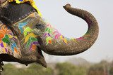 Decorated elephant at the elephant festival in Jaipur  Orientalne Fototapeta