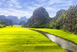 Rice field and river, NinhBinh, vietnam landscapes  Krajobraz Fototapeta