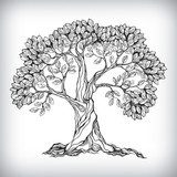 Hand drawn tree symbol  Drawn Sketch Fototapeta
