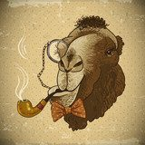 Vintage Card Hipster Animal Camel with pipe  Fototapety Graffiti Fototapeta