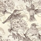 Beautiful vector seamless wallpaper with  humingbirds in vintage  Drawn Sketch Fototapeta