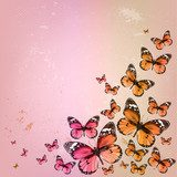 Colorful vintage summer background with butterfly. Grunge paper  Motyle Fototapeta