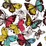 Vector seamless wallpaper with colorful butterflies  Motyle Fototapeta