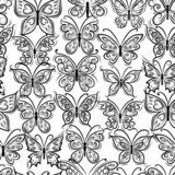 Butterflies ornate, seamless pattern for your design  Motyle Fototapeta