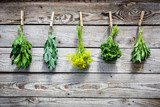 Herbs hanging over wooden background  Kuchnia Plakat