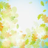 Oak autumn background, vector  Tekstury Fototapeta