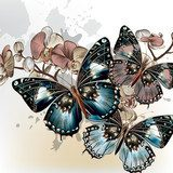 Fashion vector background with butterflies  Na laptopa Naklejka