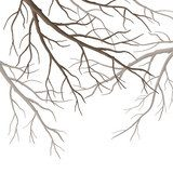 Vector Tree Branches  Na laptopa Naklejka