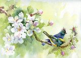 Painting collection Birds of spring  Obrazy do Sypialni Obraz