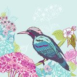 Bird with Flowers Background - for design and scrapbook - in vec  Obrazy do Sypialni Obraz