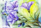 Wildflowers. Watercolor painting.  Olejne Obraz