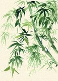 Green Bamboo, painted in watercolor in oriental style  Orientalne Fototapeta