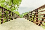 Pedestrian Bridge in a Park and Cloudy Sky  Fototapety Mosty Fototapeta