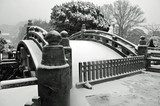 Japanese Bridge with Snow  Fototapety Mosty Fototapeta