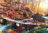 Bridge in the forest  Mosty Fototapeta