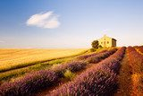 chapel with lavender and grain fields, Plateau de Valensole, Pro  Prowansja Fototapeta