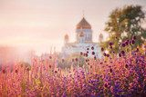 View of the Cathedral of Christ the Savior in Moscow  Prowansja Fototapeta