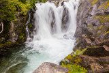 Waterfall on the Paradise River, Mt. Rainier National Park  Wodospad Fototapeta