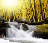 Autumnal forest with waterfall in Czech Republic  Wodospad Fototapeta