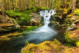 Beautiful cascade waterfall in the forest,Retezat,Romania  Wodospad Fototapeta