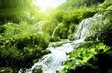 waterfall in deep forest  Wodospad Fototapeta