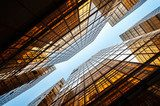 Upwards shot of Hong Kong office buildings reflecting light  Architektura Plakat