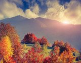 Colorful autumn landscape in the mountains  Sypialnia Plakat