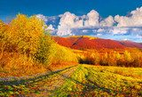 Colorful autumn landscape in the mountains  Plakaty do Sypialni Plakat