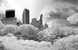 Panorama infrared image of the Central Park  Miasta Fototapeta