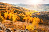 Beautiful view of autumn forest in the mountains  Las Fototapeta