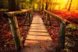 Footbridge path through woods in magical light  Las Fototapeta