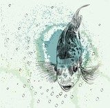 sketch of a fish  Drawn Sketch Fototapeta