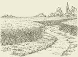 Vector summer landscape. A dirt path through fields of wheat  Drawn Sketch Fototapeta