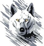 vector wolf  Drawn Sketch Fototapeta