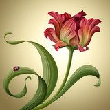 illustration of a beautiful red tulip flower with ladybug  Kwiaty Obraz