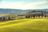 Artistic Tuscan landscape with cypresses, wavy fields and house  Krajobrazy Obraz