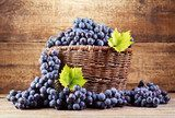 grape in wooden basket  Obrazy do Kuchni  Obraz