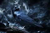 Black raven in moonlight perched on tree. Scary, creepy, gothic  Zwierzęta Plakat